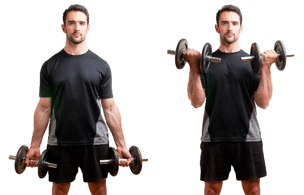 Dumbbell Curl Biceps Workout at Home